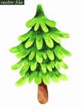 Singolo albero di abete Pittura dell'acquerello Fotografie Stock