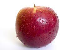 Singolo Apple rosso Fotografia Stock Libera da Diritti