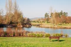 Singolo banco vuoto in un parco con il lago Immagine Stock Libera da Diritti