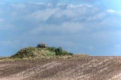 Singolo dolmen nel campo Fotografia Stock Libera da Diritti