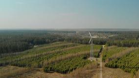 Singolo generatore eolico con l'elica tre-a lame girante installata nella foresta in chiaro tempo soleggiato video d archivio