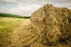 Singolo Hay Bale Fotografie Stock Libere da Diritti