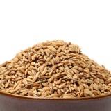 Singolo mucchio della parte anteriore del seme del riso non macinato del grano della risaia Fotografie Stock