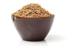 Singolo mucchio della parte anteriore del seme del riso non macinato del grano della risaia Immagini Stock