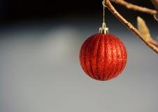 Singolo ornamento rosso dell'albero di Natale Fotografia Stock