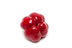 Singolo peperone dolce rosso Fotografie Stock