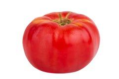 Singolo pomodoro rosso isolato su fondo bianco Fotografie Stock