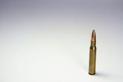 Singolo richiamo del fucile Immagini Stock Libere da Diritti