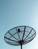 Singolo riflettore parabolico con la priorità bassa del cielo blu Immagine Stock