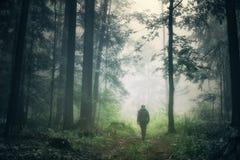 Singolo uomo che cammina in legno nebbioso Fotografie Stock