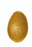 Singolo uovo di Pasqua dorato Immagine Stock