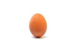 Singolo uovo marrone del pollo Immagini Stock