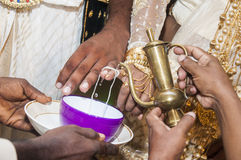 Sinhala  traditional wedding Stock Image