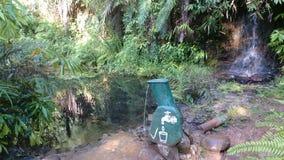 Sinharaja lasowy wejście - wodny klepnięcie Obraz Royalty Free