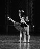 Sinister black swan Ogi Lia-The prince adult ceremony-ballet Swan Lake Stock Images