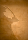 Sinister Intent. A shadow playing along a plaster wall suggest mal intent royalty free stock photo