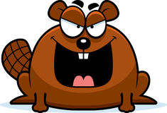 Sinister Little Beaver Royalty Free Stock Image