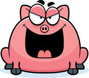 Sinister Little Pig Royalty Free Stock Photo