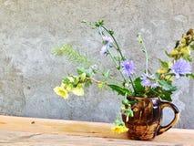 sinistra il paese e decisivo di prendere le immagini dei fiori medicinali della bella montagna immagini stock