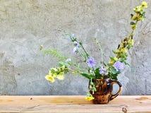 sinistra il paese e decisivo di prendere le immagini dei fiori medicinali della bella montagna immagini stock libere da diritti