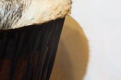 Sinistra media di Djembe dell'Africano immagine stock