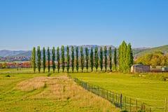 Sinj green landscape. Spring landscape in small picturesque town Sinj Croatia Stock Image