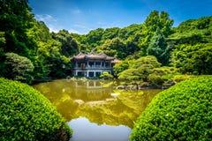 Sinjuku Gyoen trädgård Royaltyfri Foto