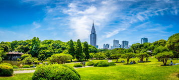 Sinjuku Gyoen trädgård Royaltyfria Foton