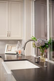 Sink with flower arrangement in new home. Sink with vase and flowers in newly constructed home royalty free stock photography