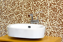 Sink and foliage Royalty Free Stock Photo