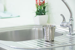 The sink and glass, stainless steel and decorated with fake tree. S , interior Royalty Free Stock Image