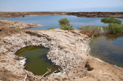 Sinkholes in Dead Sea Stock Images