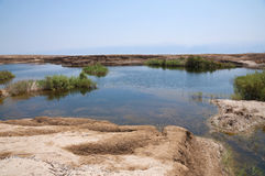 Sinkholes in Dead Sea Stock Image