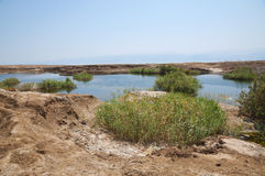 Sinkholes in Dead Sea Royalty Free Stock Photos