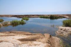 Sinkholes in Dode Overzees Stock Afbeelding