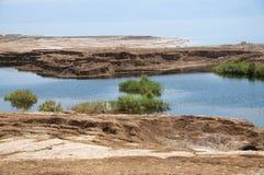 Sinkholes i det döda havet Fotografering för Bildbyråer