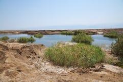 Sinkholes no Mar Morto Fotos de Stock Royalty Free