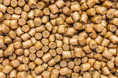 Sinking extruded fish feed Royalty Free Stock Photo