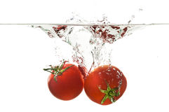 Sinking Tomato Splash royalty free stock photo