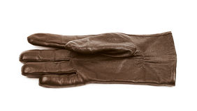 Sinlge brown leather glove isolated. Over the white background Stock Photography
