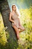 Sinnliche blonde Frau auf Feld im reizvollen kurzen Kleid Stockbild