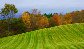 Sinnliche, bunte Landschaft, glücklich, unschuldig, kindlich Lizenzfreie Stockfotografie