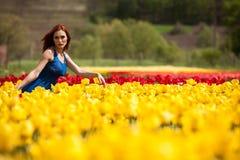 Sinnliche Frau auf dem Blumengebiet am sonnigen Tag Lizenzfreie Stockfotos