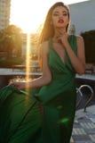 Sinnlig kvinna med mörkt hår som bär den eleganta siden- klänningen Arkivbild
