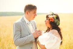 Sinnligt gift par på gult sommarfält royaltyfri foto