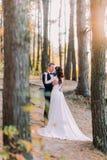 Sinnligt ögonblick av för romantiker som gifta paret nyligen rymmer sig i höstpinjeskogen Royaltyfri Fotografi