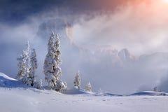 Sinrise bonito do inverno em montanhas nevoentas fotos de stock