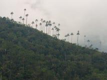 sinta a sensação viva feliz sobre sua vida em Colômbia imagens de stock