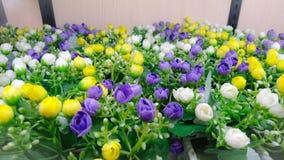 Sintetis de fleur Photo stock