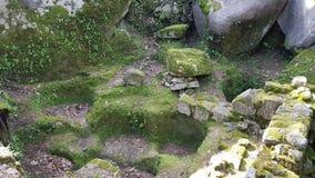 Sintra, château de Sintra et nature Image libre de droits